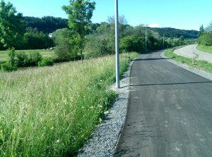 Radwegzwischen Wutöschingen und Degernau (WT) -